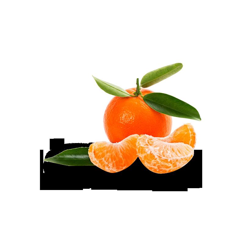 Avril 2014 - Mandarine