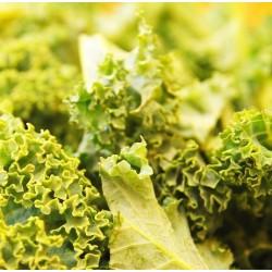 Salade de kale et courge butternut