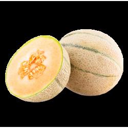 Juillet 2016 - Melon