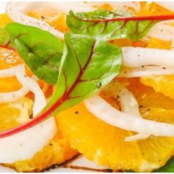 Orange et fenouil en salade