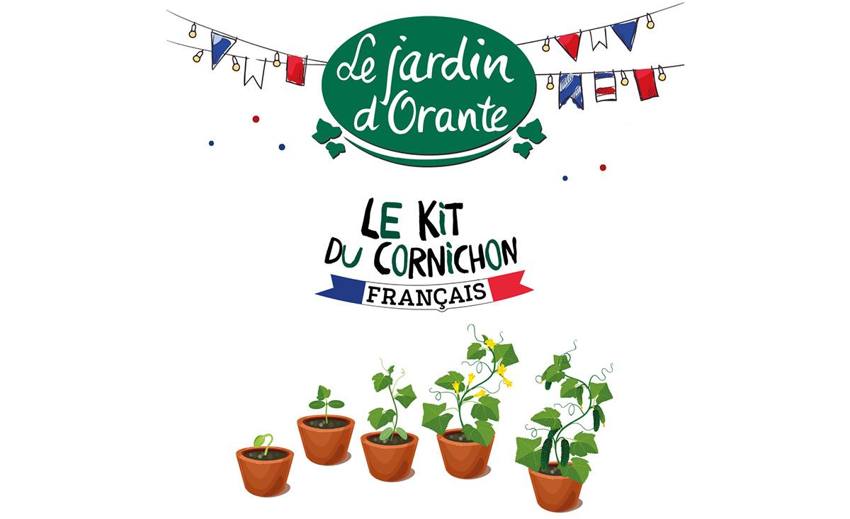 Kit Cornichon Maison article blog.jpg